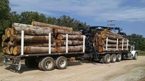 trucked logs